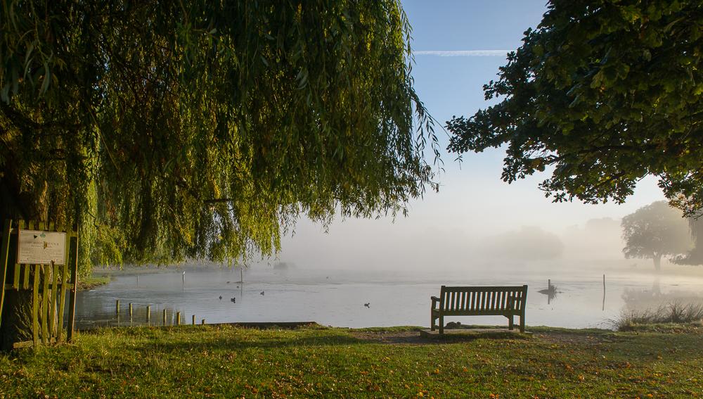 Bushy Park – near Hampton Court Palace
