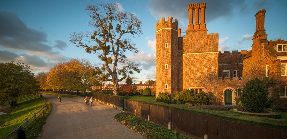 Evening photos near Hampton Court