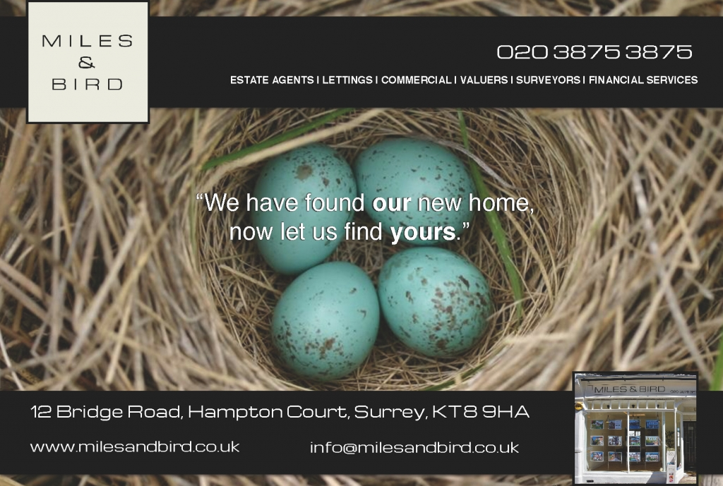 Miles-Bird-Estate-Agent-East-Molesey-Nest
