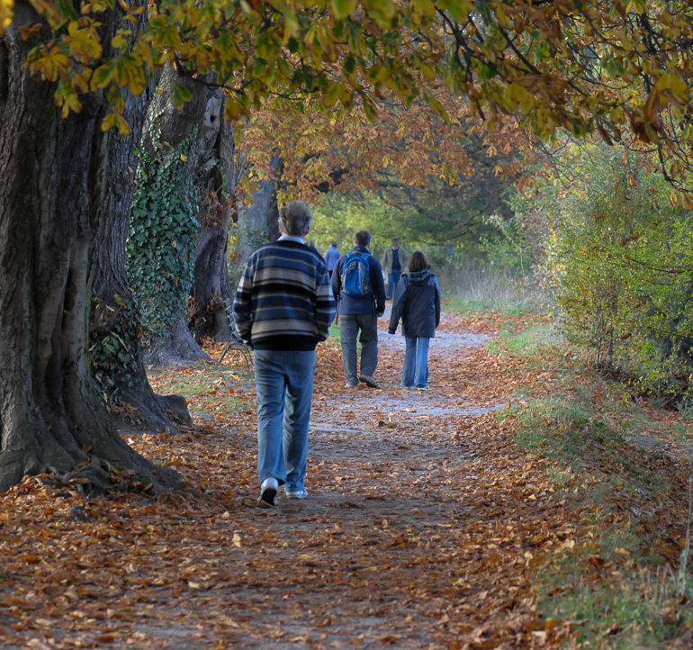 Walking and Cycling in East Molesey, Hampton Court and the Surrounding area