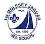 Molesey 1st Jaguar Sea Scouts