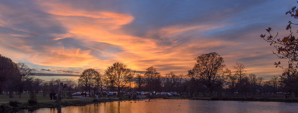 Sunset in Bushy Park 8 Dec 2013