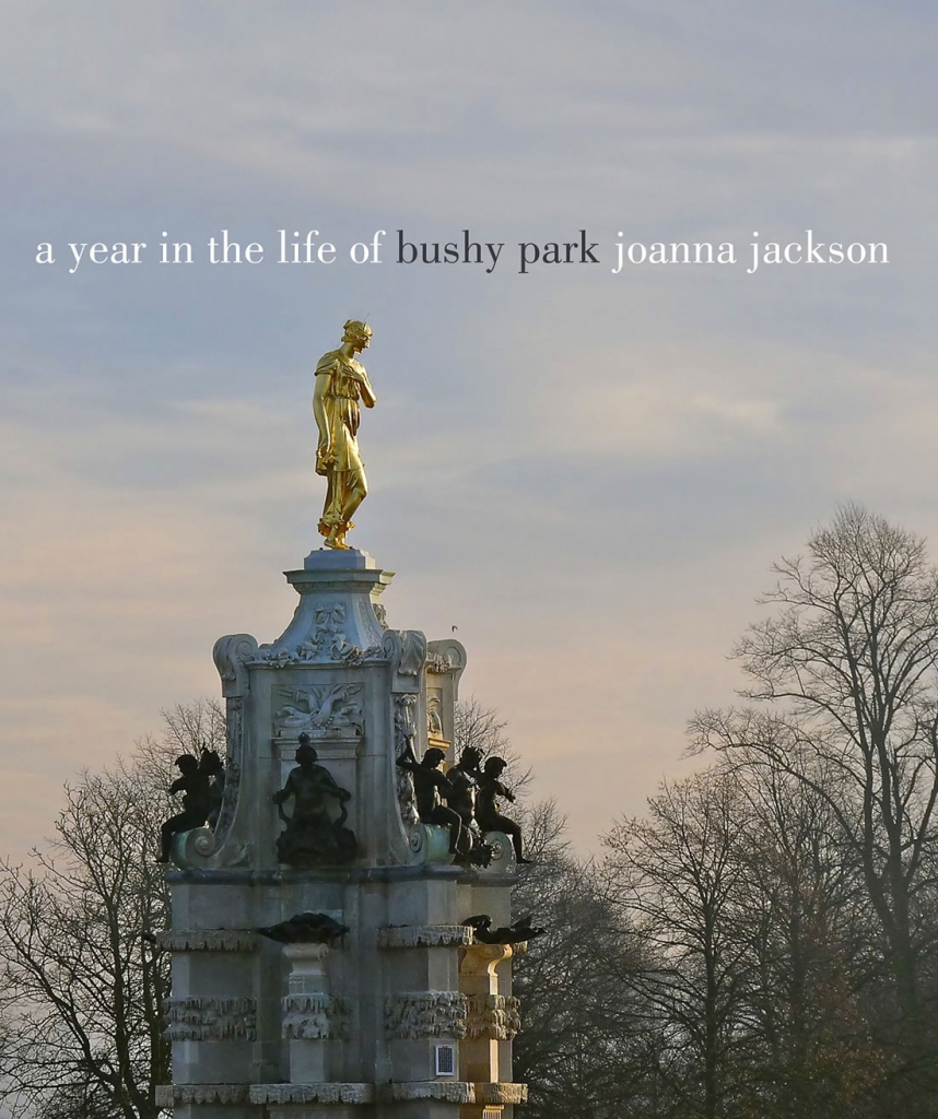 A year in the life of Bushy Park © Joanna Jackson