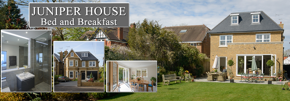 Juniper House Bed and Breakfast